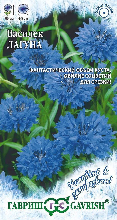 Семена василька Лагуна синий ( Г )