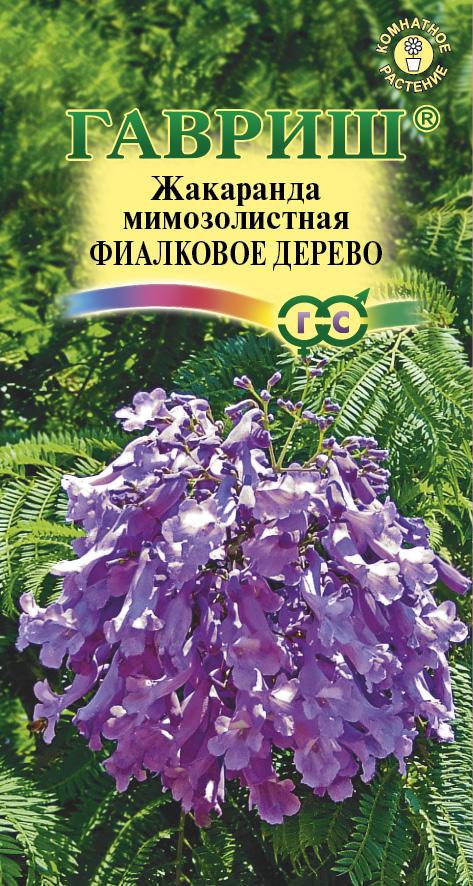 Семена жакаранда Фиалковое дерево (Г)
